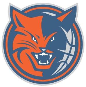 Former Bobcats Logo Dilemma X