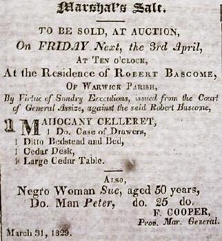 Bermuda Enslaved African Sale