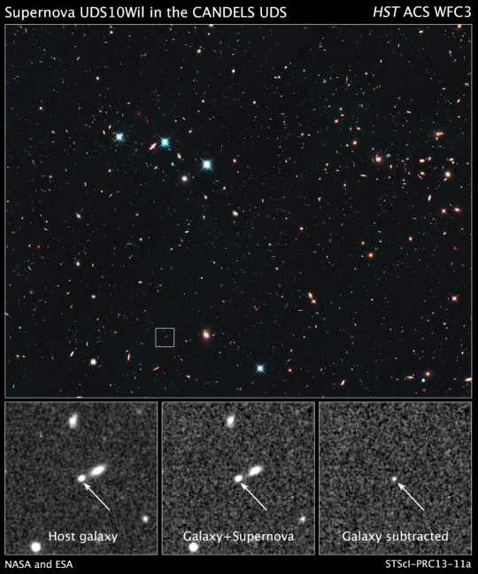 NASA's Hubble Space Telescope supernova UDS10Wil- SN Wilson