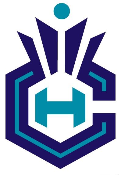 Charlotte Hornets City Logo