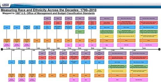 US Census Ethnicity Boxes