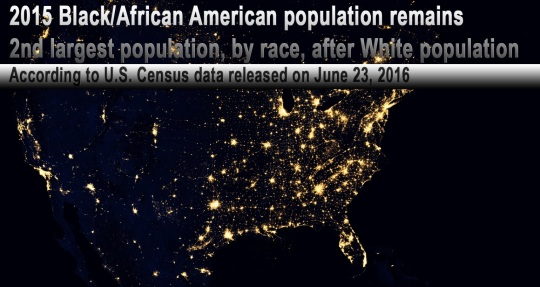 African American Population 2nd Largest By Race