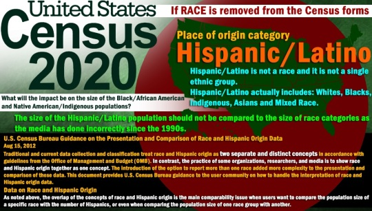 2020-census-race-category
